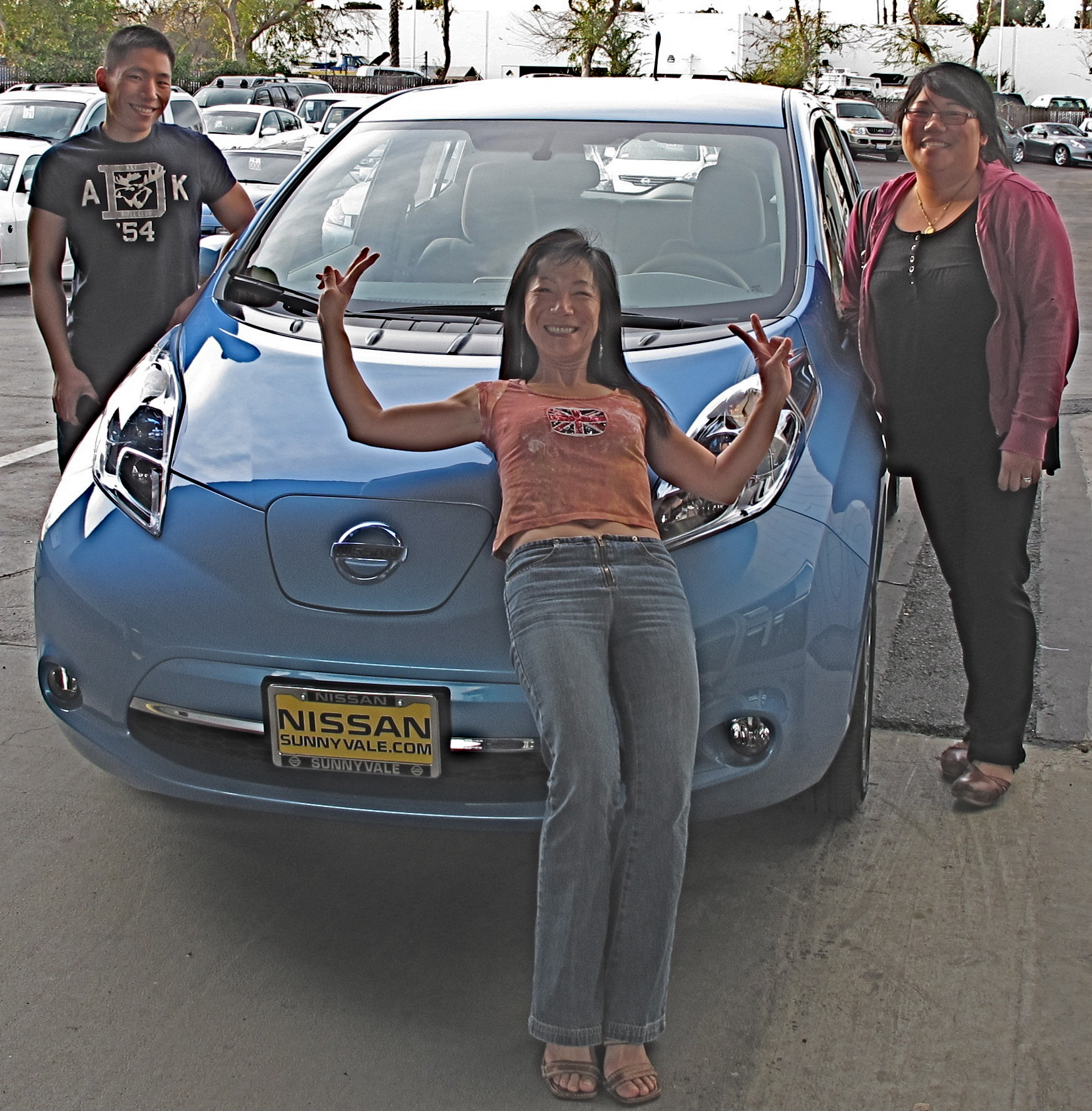 what is charge package option on nissan leaf autos post. Black Bedroom Furniture Sets. Home Design Ideas